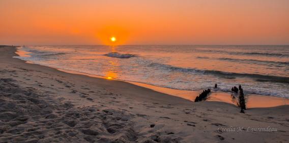 New Jersey Dawn