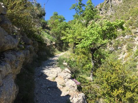 promenades dans des gorges