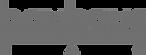 Logo_Bauhaus_Dessau.svg.png
