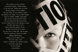 caution & poem.jpg