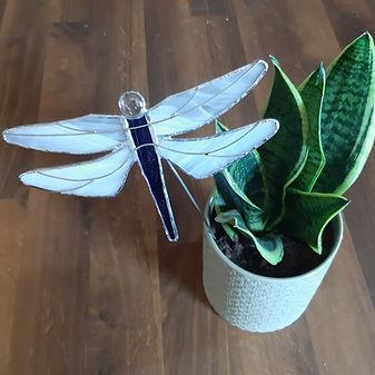 dragonfly on stake.jpg