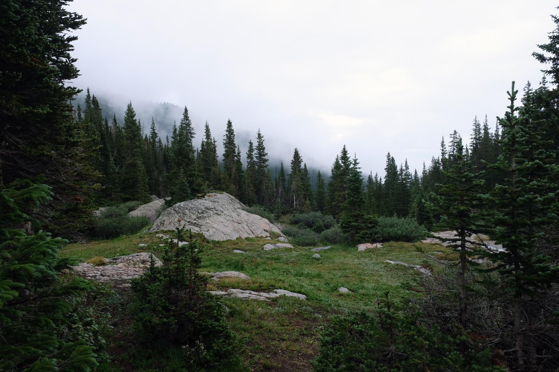"""Backcountry Mist, 9""""x 6"""", 2020"""