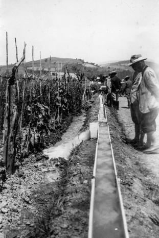 Impianto-irrigazione-1932.3.jpg