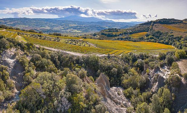 escursioni, montalcino, le ripe, Slow travel tuscany, e-bike, trekking, wine experience, vino, toscana
