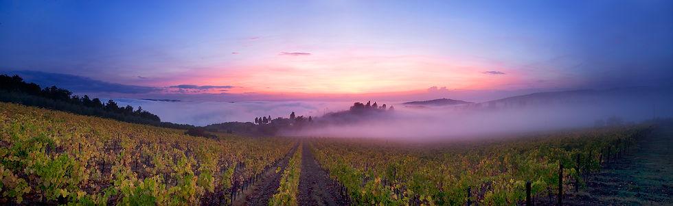 Slow travel tuscany, e-bike, trekking, wine experience, vino, toscana