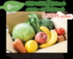 野菜Bセット.png