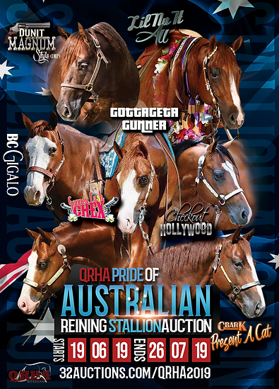 Take-2-QRHA-Stallion-Auction-Flyer (003)