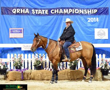 Class 6a Senior Horse Open