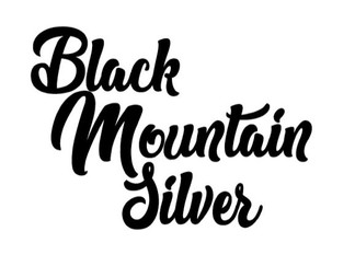 The Black Mountain Silver QRHA Ranch Series and Ranch Versatility Series