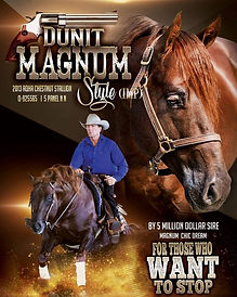 Dunnit Magnum Style Flier_Cropped.jpg