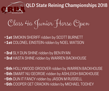 Class 4 Reining- Jnr Horse Open