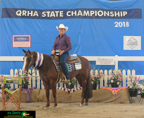 CLass 10c. Ryan Performance Horses Rookie Professional