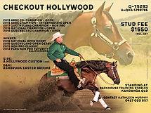 Checkout Hollywood promo 2019 19cm.jpg