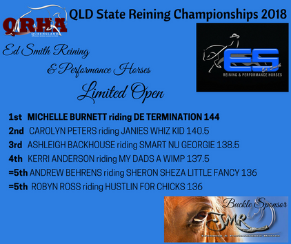 16b. Ed Smith Reining & Performance Horses Limited Open
