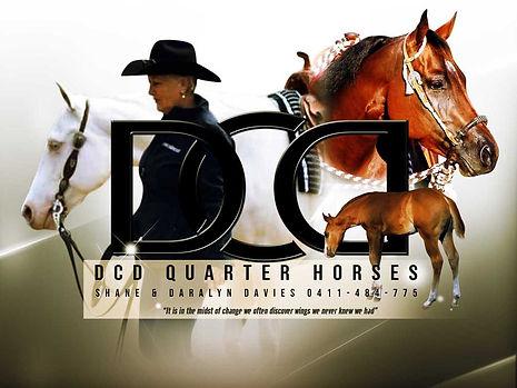 DCD Quarter Horses 85mm 2021.jpg