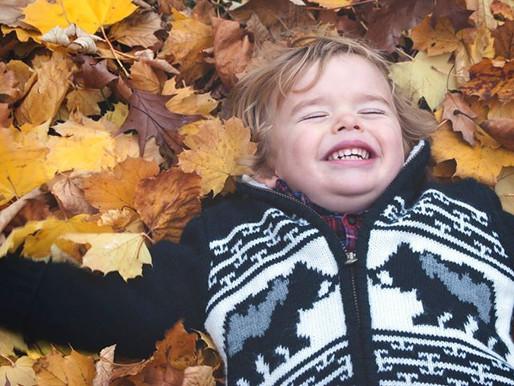 Let's Fall Down in Autumn | Hannah & Rhys | Delaware Park, Buffalo, New York Photography