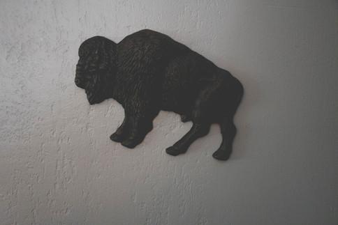 Our Buffalo