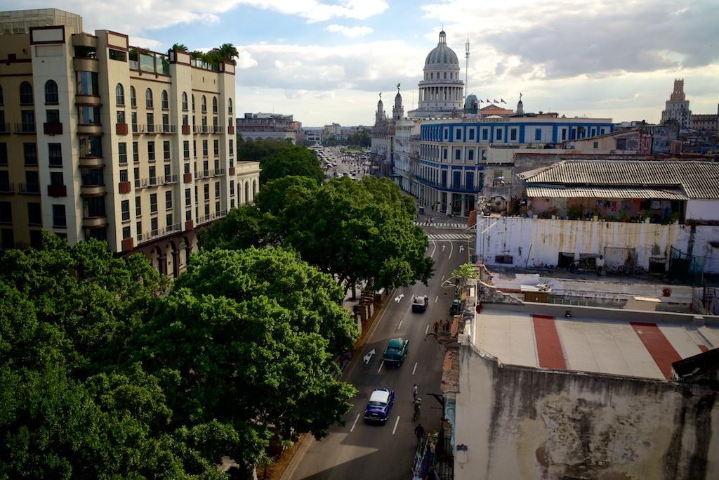 Havana 253