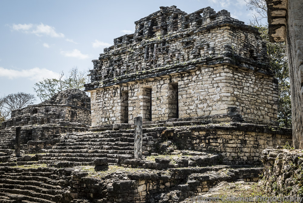 PALENQUE EXPERIENCE