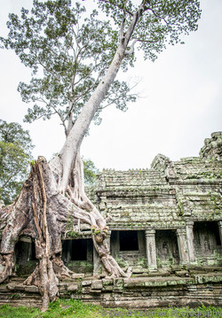 Cambodia-57