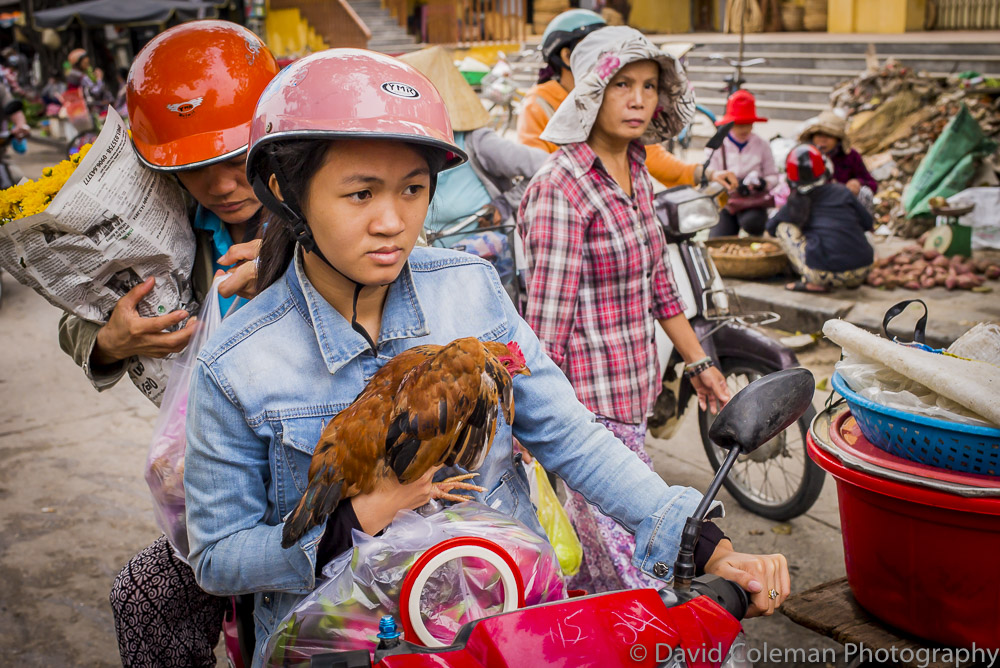 Vietnam-135