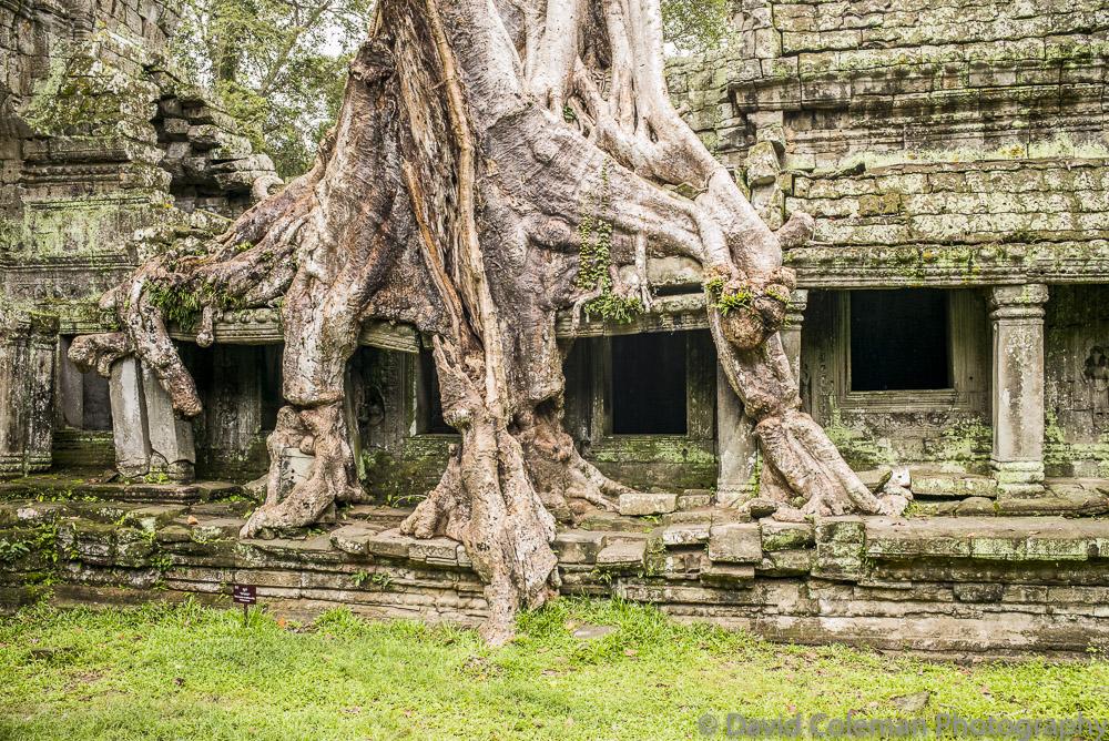 Cambodia-56
