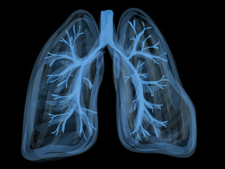 Mental and Emotional Aspects of the Lungs