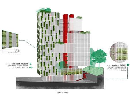 קירות ירוקים וגינה קהילתית