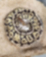 Clutch 14.jpg