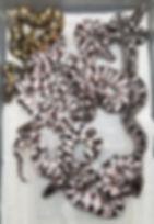 Clutch 46-2.jpg