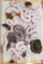 Clutch 40-2.jpg