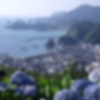 あじさいの丘.jpg