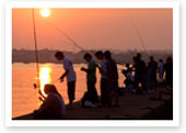 img_ph_fishing.jpg