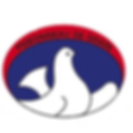 logo-site-pigeon