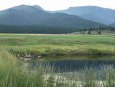 pond near lodge