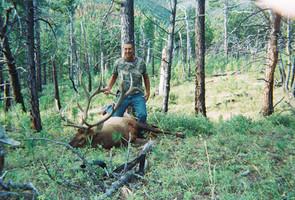 Elk Hunt