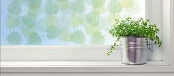 Loview_WindowArt_Leaves_Banner