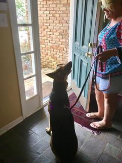 Tito practicing door manners