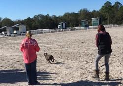 CAT Gulfport 10/17