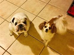Tucker & Lexie