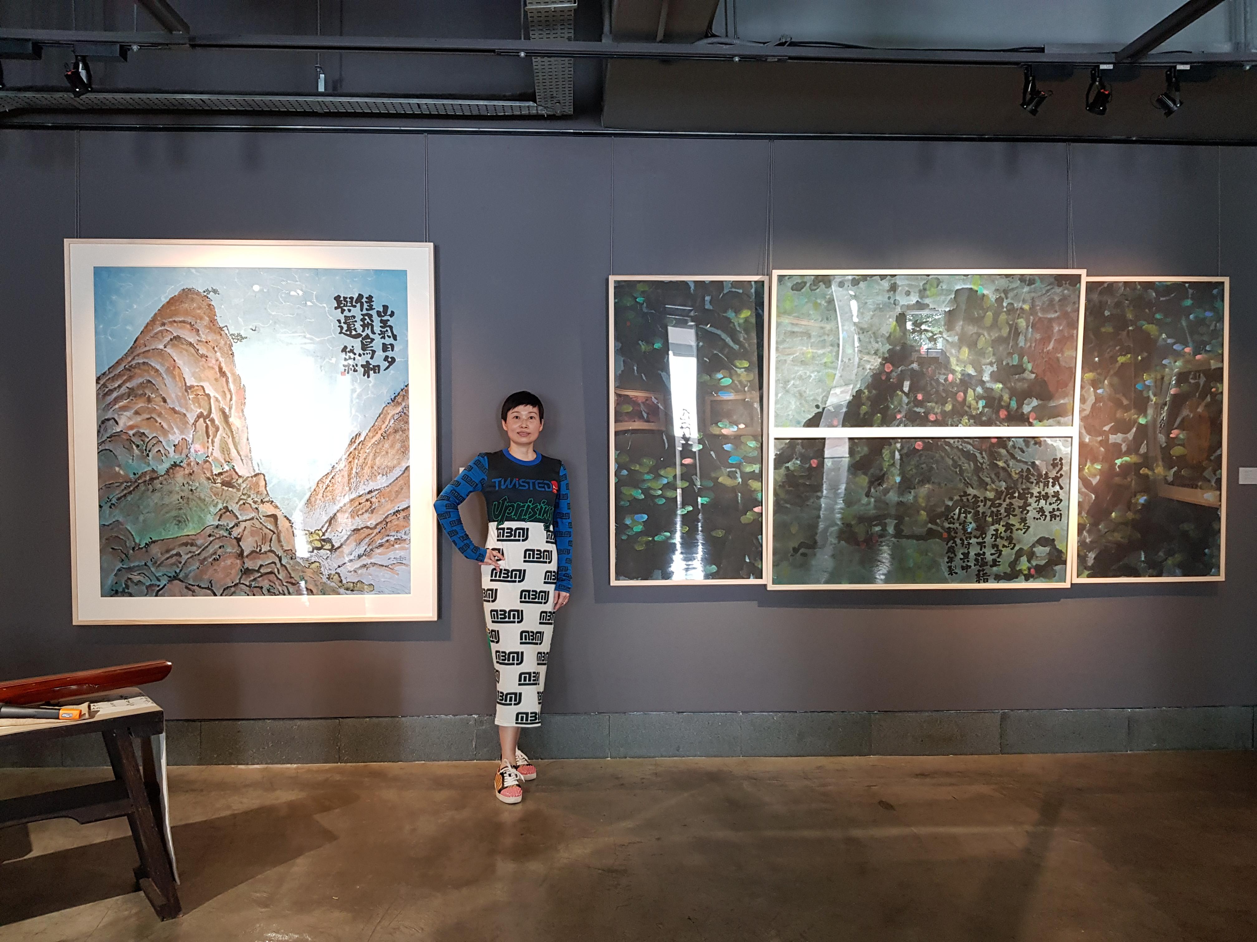 Allison solo exhibition (10)