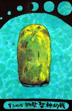 My Papaya