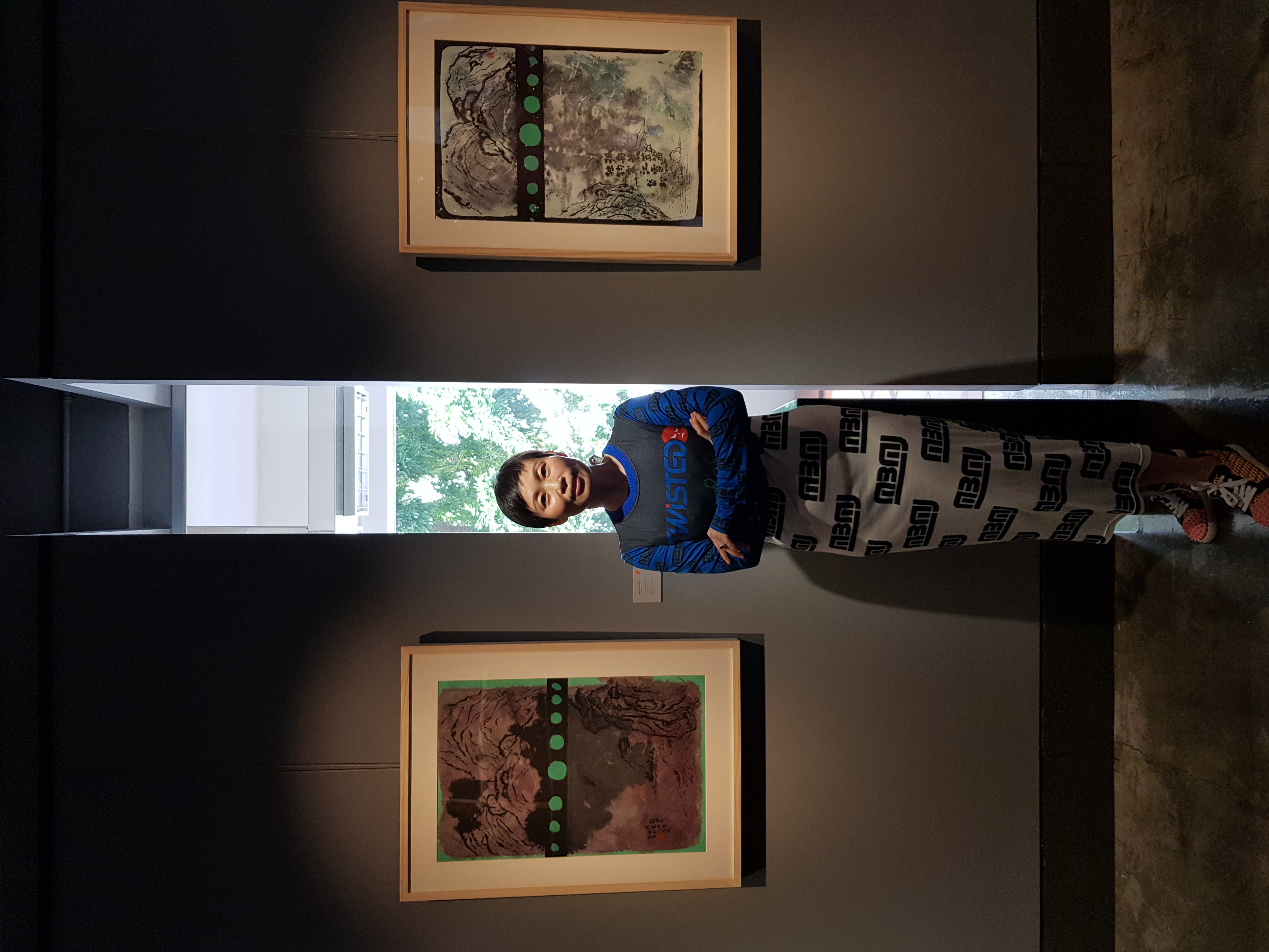 Allison solo exhibition (7)