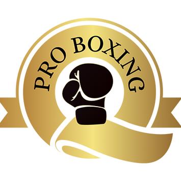 Q Pro boxing