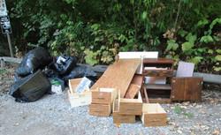 Dumping-Additional Furniture  IMG_0735