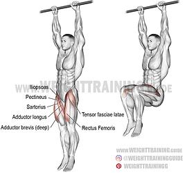 Hanging-leg-raise.png