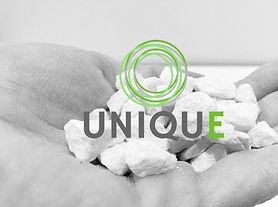 UNIQUE WEB.jpg