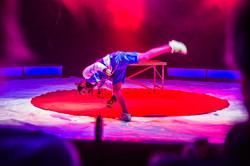 Première_Circus_Nock-69