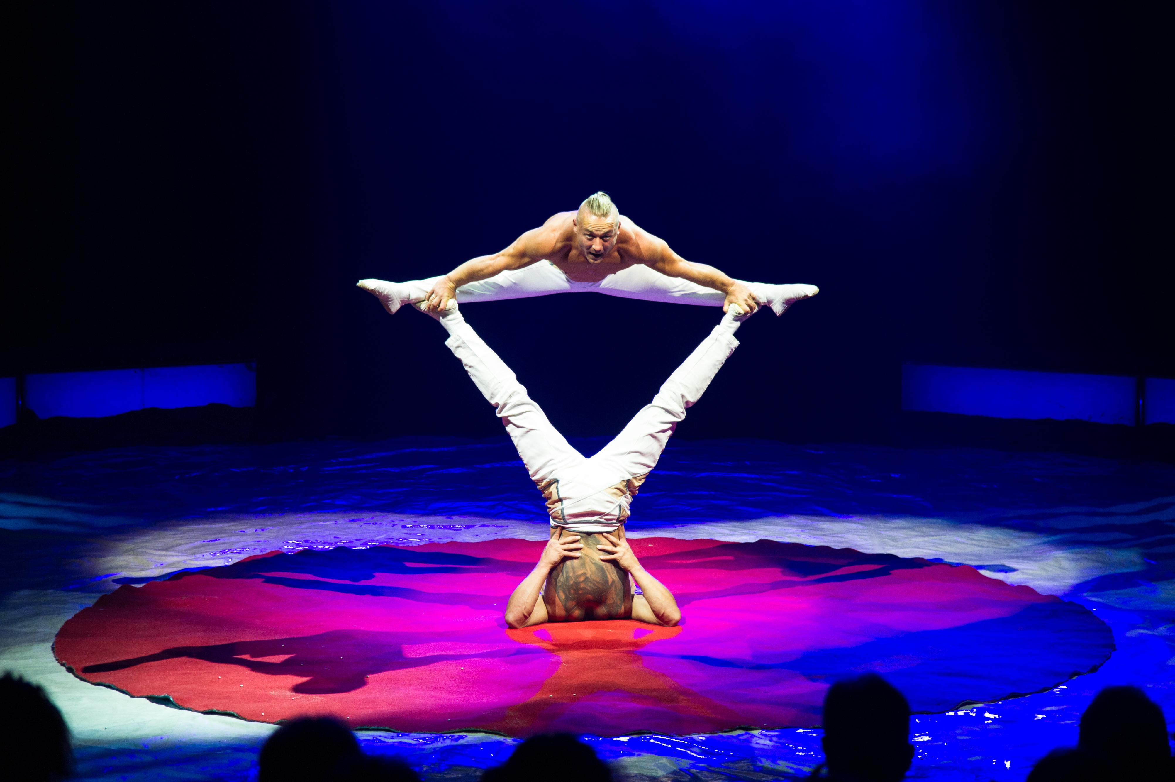 Première_Circus_Nock-199