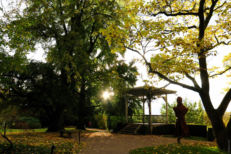 Landschaft_Herbstsonne